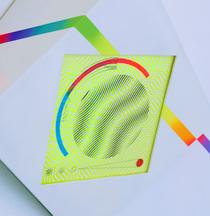 Hilary White art for Ingress Egress at Paradigm Gallery custom built frames and screen prints